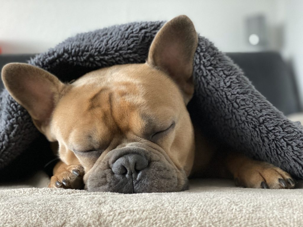 吃音は寝不足で悪化する!嫌な記憶を消し十分な睡眠がとれるようになった8つの方法