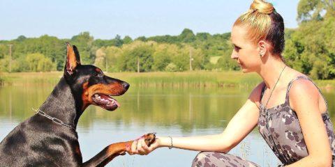 犬と外国人女性 思いやり