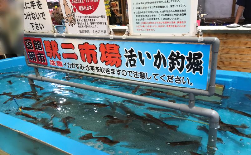 新鮮すぎる!函館朝市のイカがうますぎた!
