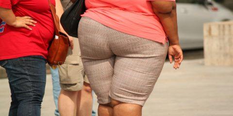 太っている人のおしり